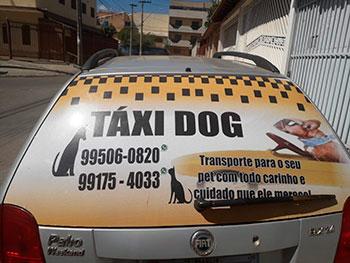 TaxiDog Imagem